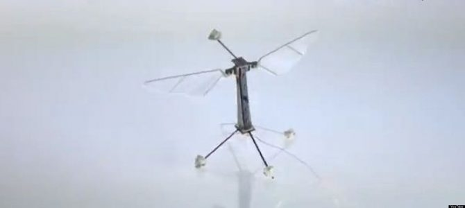 Robobees for Artificial Pollination of Crops and Rescue Missions