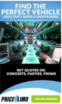 Best Party Bus Rental Services for Groups